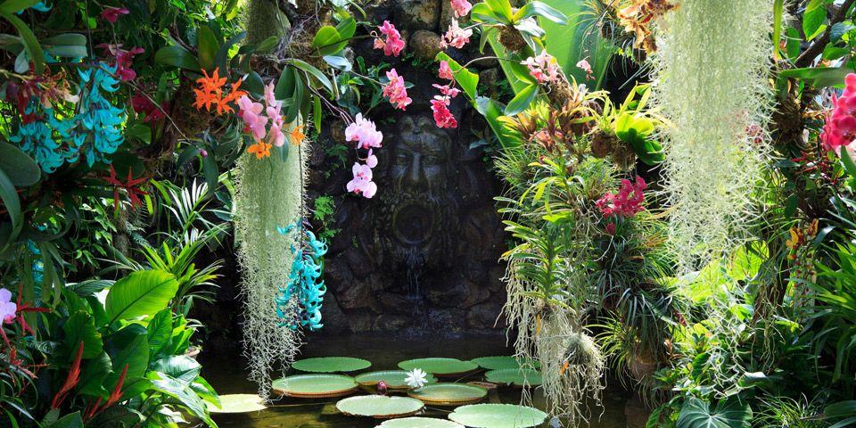 Image result for garden the mortella